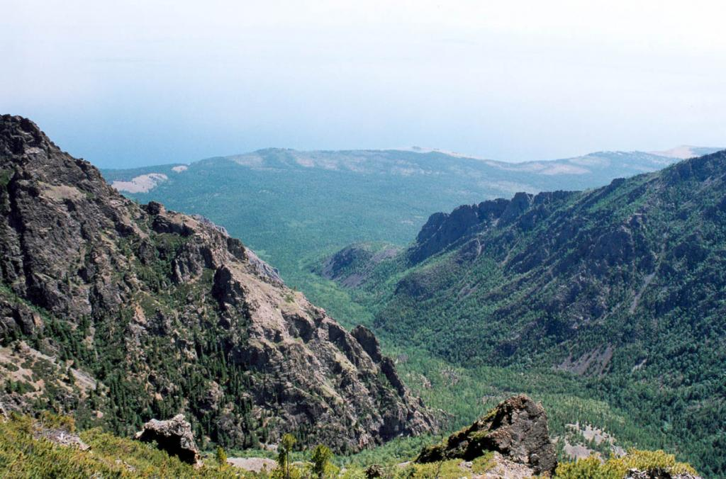 С вершины левого скалистого склона распадка Солнцепадь хорошо видна облесенная северная часть мыса Покойники. БЛГЗ.
