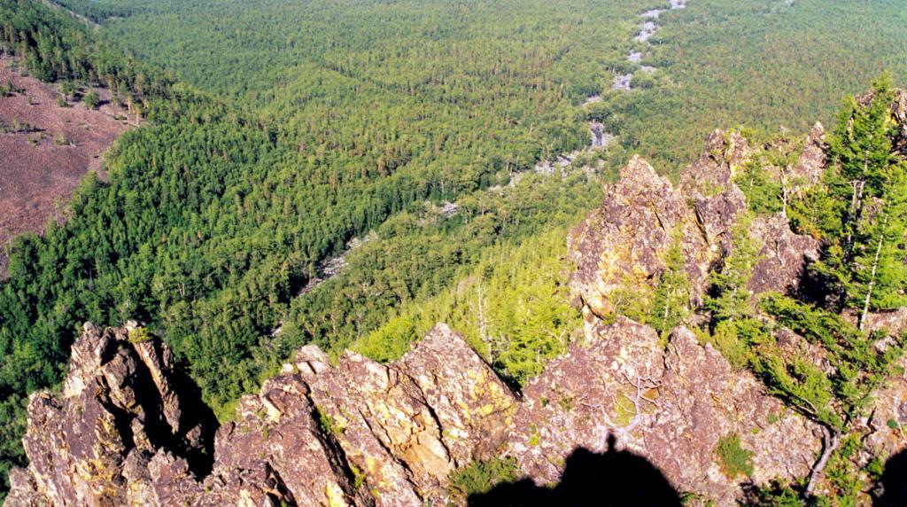 Острозубые гранитные останцы возвышаются над правым берегом р. Заворотная. На снимке: устье распадка и часть мыса Заворотный.
