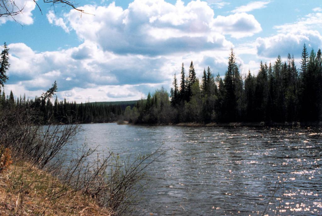 Река Лена. Байкало-Ленский заповедник. Снимок сделан вблизи п. Чанчур.