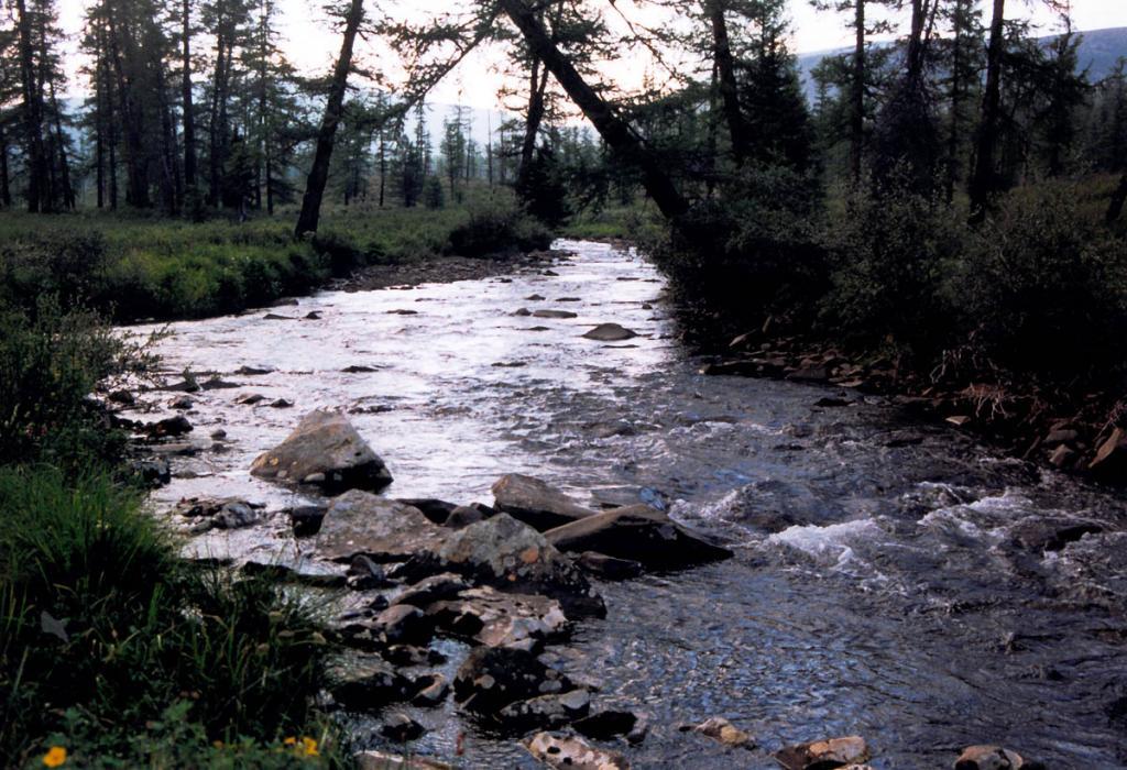 Река Лена в 3 километрах от истока.