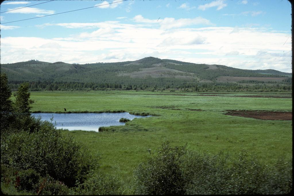 Восточная Сибирь. Пейзаж близ Читы