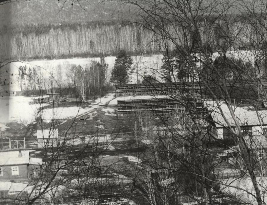 Вид на Иркутский питомник лаек. 1972 год, с. Моты.