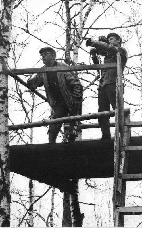 Вольерный кабан Иркутского питомника лаек. Жил в питомнике с 1986 г. по июнь 1991 годаРабота лайки по вольерному кабану, май 1991 годаЭксперт Кружков Н.А. наблюдает с вышки за работой лаек по вольерному кабану. Май 1991 года.