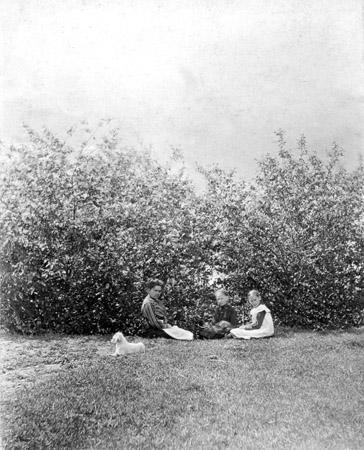 Предположительно Иркутск, 1905 г. Стереоснимок.