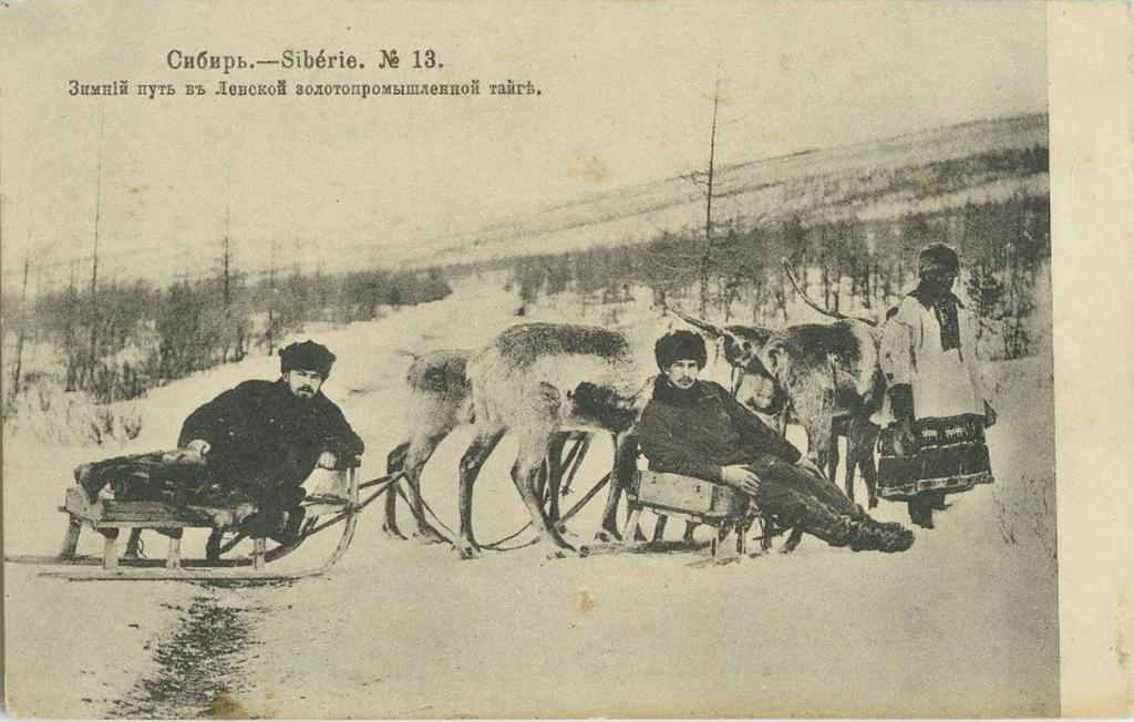Зимнiй путь въ Ленской золотопромышленной тайгъ.