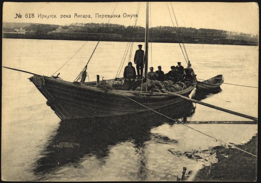 Река Ангара. Перевозка омуля