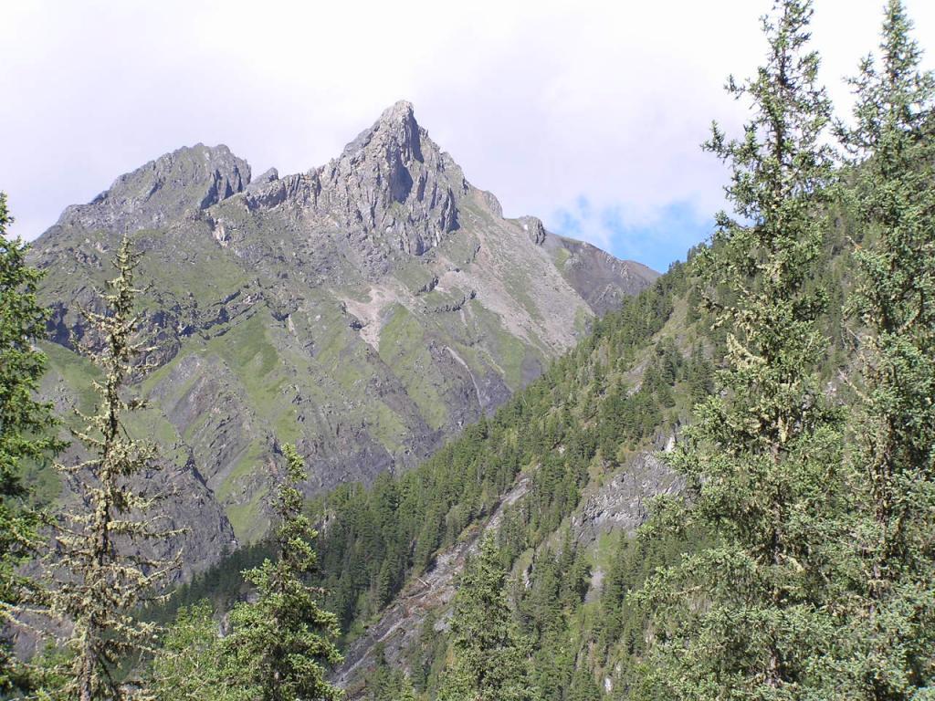 Шумакский пейзаж