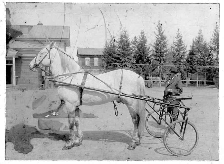 Иркутский купец И.Н.Алексеев во дворе собственного дома. 1910