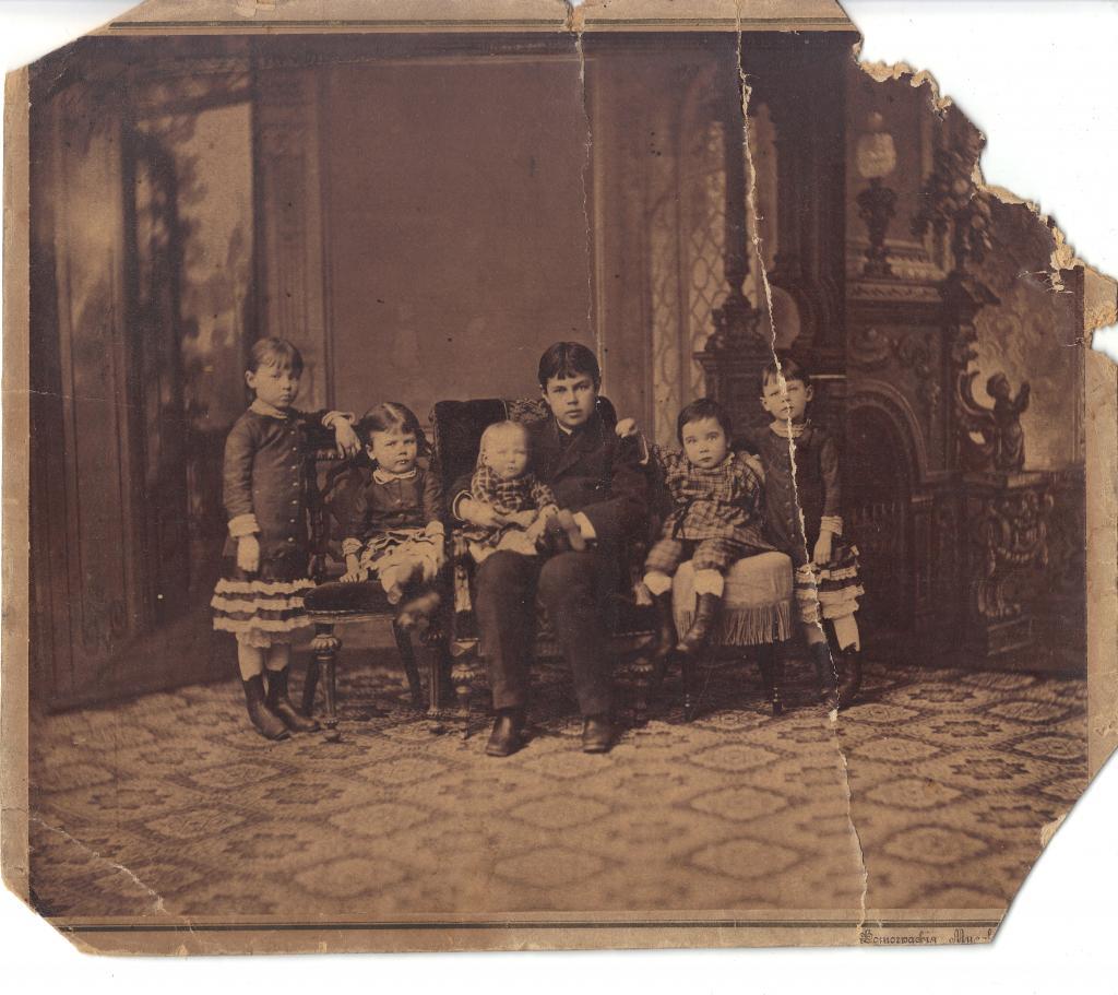 Сошниковы. 1884