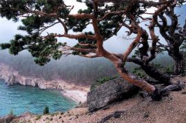 """У Песчаной есть особенное очарование! Не зря за бухтой закрепилось название """"Сибирская Ривьера""""."""