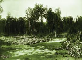 На реке Бабка