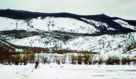 Д. Черноруд