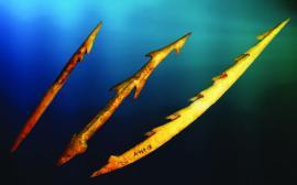 Рыболовные крючки. кость. ИОКМ