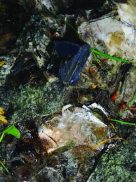 Кристаллы мусковита (слюды) в кварцевой породе