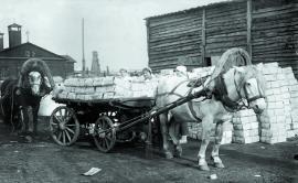 Фасовочная мастерская Союзсольсбыта в г. Усолье-Сибирском. Идет погрузка соли