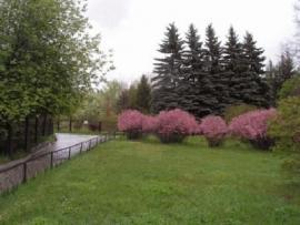 Ботанический сад ИГУ