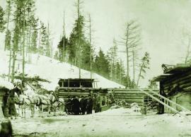 Почтовый стан. Зимовье в тайге. 1902 г. ИОКМ ф530-70