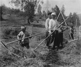 Листвянская семья на заготовке сена. 20-е годы, фото Житенева