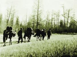Заход в тайгу. Облпотребсоюз. 1951 г. ИОКМ ф159-10