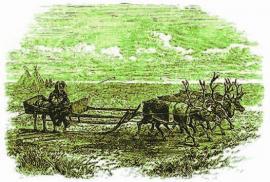 Езда на оленях. Старинная гравюра