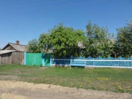 Александровск. По центральной улице.
