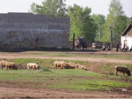 Село Бахтай