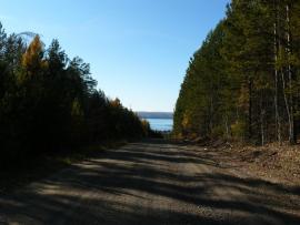 Дорога на Шумилово