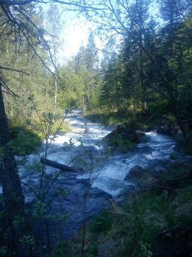Река Б.Мамай в июне