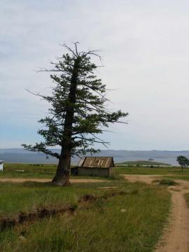Посёлок Курма.