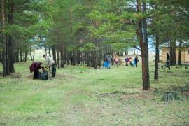Участники проекта «Чистые Берега Байкала» провели акцию «Праздник чистоты» на Ольхоне.