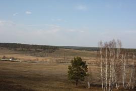 Местность вблизи Андрюшинского сельского поселенич