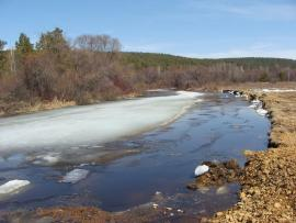 Река Ушаковка в районе Пивоварихи