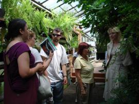 В Ботаническом саду ИГУ