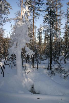 Вход в пещеру. Снимок Вячеслава Петухина (сайт http://nature.baikal.ru/)