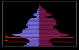 Половозрастная структура населения г. Иркутска, 2010 г.