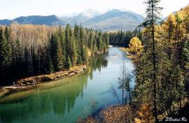 Река Большая в Баргузинском заповеднике.