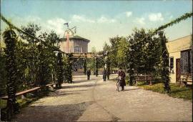 """Загородный сад """"Царь-девица"""" на дореволюционной открытке"""