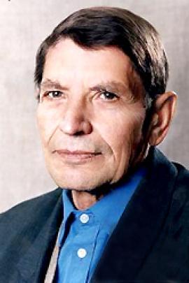 Михаил Григорьевич Денисенко
