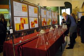 Выставка доисторических насекомых в Отделе природы ИОКМ