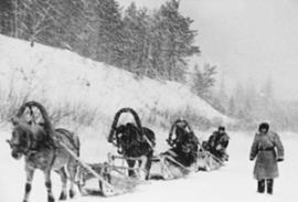 Денежная реформа 1961 года. Астрономические суммы возили на лошадях в сопровождении двух автоматчиков
