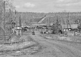 Село Молька - один из лидеров по сельскохозяйственной продукции Усть-Удинского района
