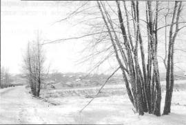 Долина р. Черемшанки. Болота зимой. Фото Т. Ковальской