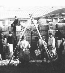 В 1782 г. вышел указ, согласно которому была «дозволена свободная торговля ревенем и ревенным семенем как внутри, так и вне границ России»