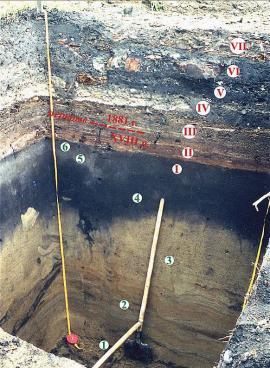 Иркутск. Строение отложений на ул. Чкалова. Догородские слои: 1 – русловая фация аллювия (возраст не ясен); 2 – пойменная фация аллювия (24 – 14 тыс. л. н.); 3 – субаэральные отложения (14 – 10,3 тыс. л. н.); 4 – луговая почва (10,3-4,5 тыс. л. н.); 5 – гумусовые горизонты (4,5 тыс. л. н. до второй половины XVII в.); 6 – антропогенно-преобразованные гумусовые горизонты – начало городского этапа освоения. Культурогенные слои: I – конец XVII – начало XVIII вв.; II – XVIII в.; III – первая половина 80-х гг. XI