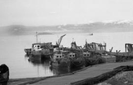 Рыболовецкий флот еще послужит людям