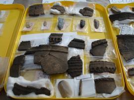 Находки, сделанные на территории Глазковского некрополя