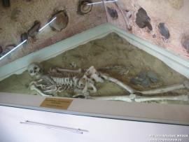 В археологической экспозиции представлено захоронение глазковской культуры.