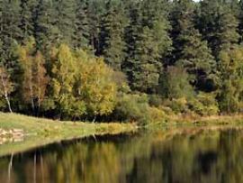 Санаторий «Мальтинский» расположен на правом берегу реки Белая.
