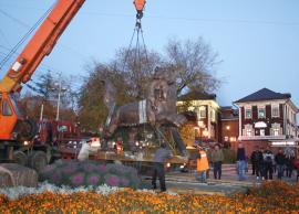 Установка памятника бабру в Иркутске. 4 октября 2012 года