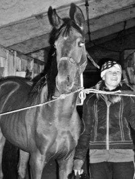 Лошадь — самый верный друг